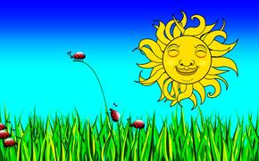 трава, солнце, божьи коровки