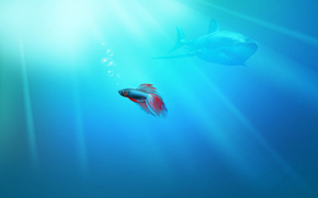 Windows 7, wallpaper, 3d, art, fish + Shark