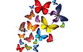 Butterflies, Multicolored, rainbow