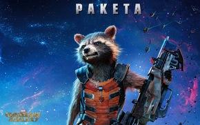 Guardians of the Galaxy, fantasy, raccoon