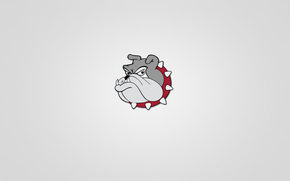 Snout, serious, animal, minimalism, red collar, bulldog, dog, head, light background, Spikes