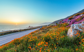 sky, stones, Poppies, Flowers, sea, Mountains, road, evening, sun, sunset