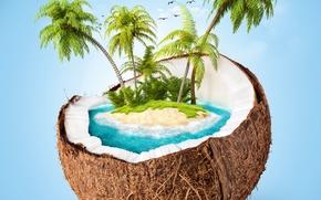 sky, coconut, sea, Palms, island, clouds