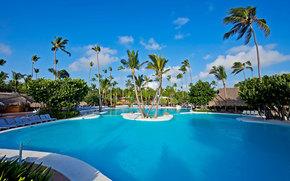Palms, pool, sunbeds., bungalow