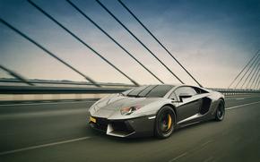 pont, accélérer, Lamborghini