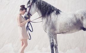 конь, настроение, девушка