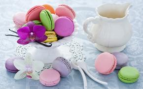 Macaroon, fel de mâncare făcut, roz, orhidee, desert, Lingură, fursecuri, ulcior, Alb, faianță, Multicolor