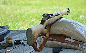 muniție, armă, pușcă