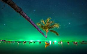 Green Tropical Night, сияние, пальма, лодки, море