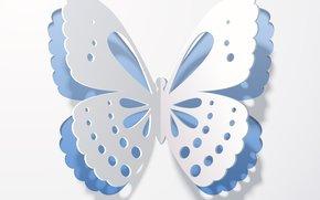 shadow, Rendering, background, wings, butterfly