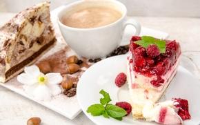 nuts, chips, Grain, raspberries, food, chocolate, dessert, BERRY, cup, coffee, baking, cake