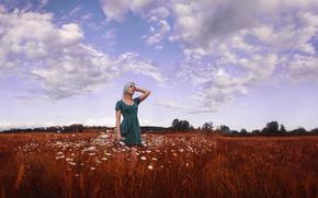 cielo, ragazza, vestire, campo di camomilla, bellezza, nuvole