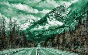 carretera, Montañas, árboles, paisaje