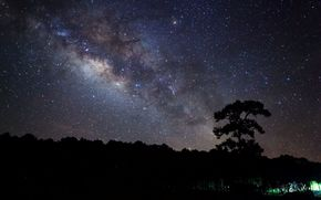 background, starry sky, Widescreen, evening, fullscreen, tree, night, trees, Star, nature, Widescreen, wallpaper