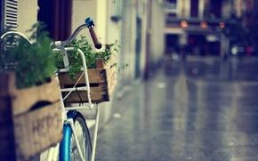 размытие, город, трава, улица, полноэкранные, велик, корзинка, разное, широкоэкранные, велосипед, фон, обои, цветы, широкоформатные, корзина, зелень