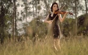 Música, violín, chica, verano, campo