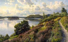 NUVOLE, alberi, paesaggio, Colline, immagine, fiume, sentiero, cielo, Pecora