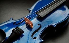 violín, Macro, Música