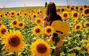 girl, guitar, summer, nature, Music, Sunflowers