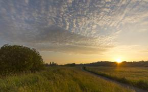 radura, alberi, tramonto, nuvole, Raggi, cielo, sentiero, sera, Germania, sole, campo