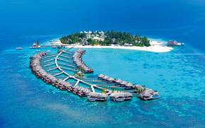 Maldives, island, Palms, landscape