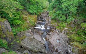 piccolo fiume, pietre, Rocce, cascata, alberi, natura