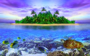 tropical island of Maldives, sea, island, fish, landscape