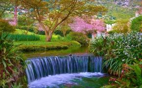 сад, парк, речка, водопад, деревья, пейзаж