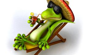 gafas, cocodrilo, Relajarse, sombrero, recreación, cóctel, RESORT, salón, sombrero