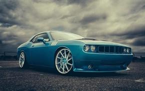muscle car, Challenger, Dodge, dodge, blu