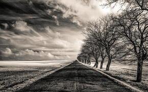 бесконечность, поле, чб, дорога, деревья