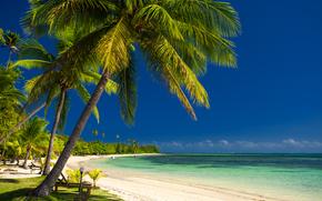 побережье, море, лодки, пальмы, coast, sea, boats, palm trees