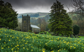 chapel, watch, trees, wallpaper, Widescreen, Flowers, background, Widescreen, fullscreen, meadow, nature
