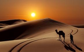 солнце, люди, пустыня, верблюд, барханы