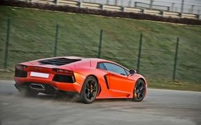clôture, route, zadok, accélérer, Lamborghini, d'orange, Lamborghini, Aventador