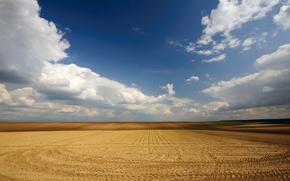 campo, nubes, trigo, Serbia, cielo