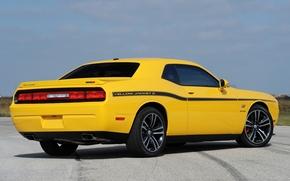dodge, Dodge, giallo, vista posteriore, Chelenzher, muscle car