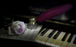 Music, style, piano, rose, feather
