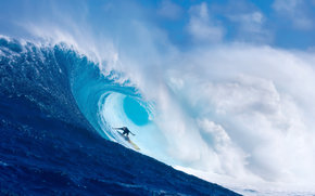 Sport, surfing, wave, ocean, surfer