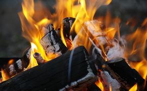 обои, разное, дрова, огонь, горение, дерево, природа, костер, фон