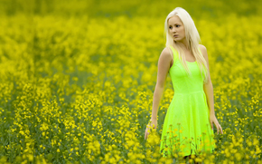 COLOR, dress, field, girl