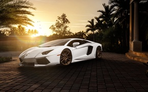 ламборгини, белый, перед, солнце, пальмы, особняк, авентадор, Lamborghini, блик, ламборджини