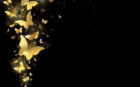 фон, золото, бабочки