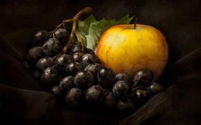 still life, grapes, apple