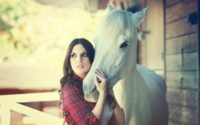конь, девушка