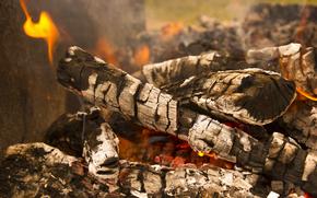 fuoco, natura, spiedini, campagna, legna da ardere