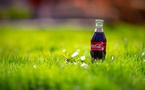 コカコーラ, マクロ, ボトル, 飲む, 自然, 草, SPRING, ボトル