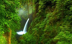 ущелье, река, деревья, лес, США, Орегон, водопад, природа