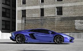 диски, ламборгини, Lamborghini, авентадор, профиль, синий
