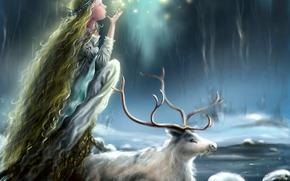 semaforo, gelato, nevicata, mania, Corni, principessa, volto, animale, capelli lunghi, ragazza, Profilo, cervo, inverno